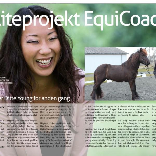 E magasinet Islandsk Hest